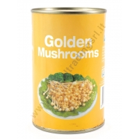 AEF GOLDEN MUSHROOMS - FUNGHI AL NATURALE 24x425g